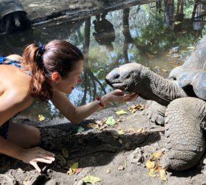 Prison Island naZanzibaru je známý protoýe naněm žijí obrosvkské suchozemské želvy. Mázete je krmit idrbat pod krkem. :-)