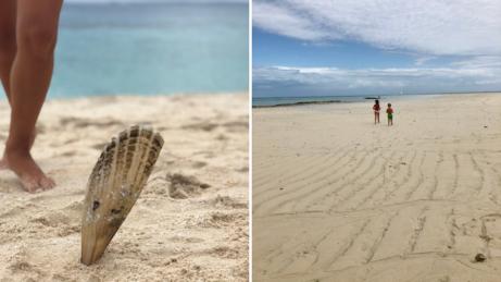 Zanzibar ajeho ostrovy, které jsou často celé pod vodou. Když zrovna nejsou, tak jsou plné nádherných mušlí.